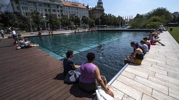 Klímaváltozás Magyarországon: hosszabb allergiaszezon, több halál a meleg miatt