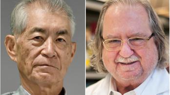 Rákkutatók kapták az idei orvosi Nobel-díjat