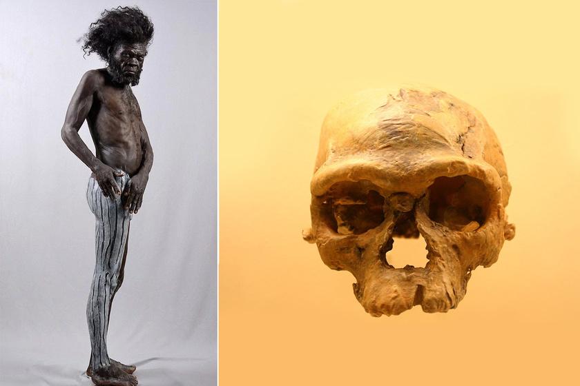 Így nézett ki az első Homo sapiens: rekonstruálták a 300 ezer éves maradványokat