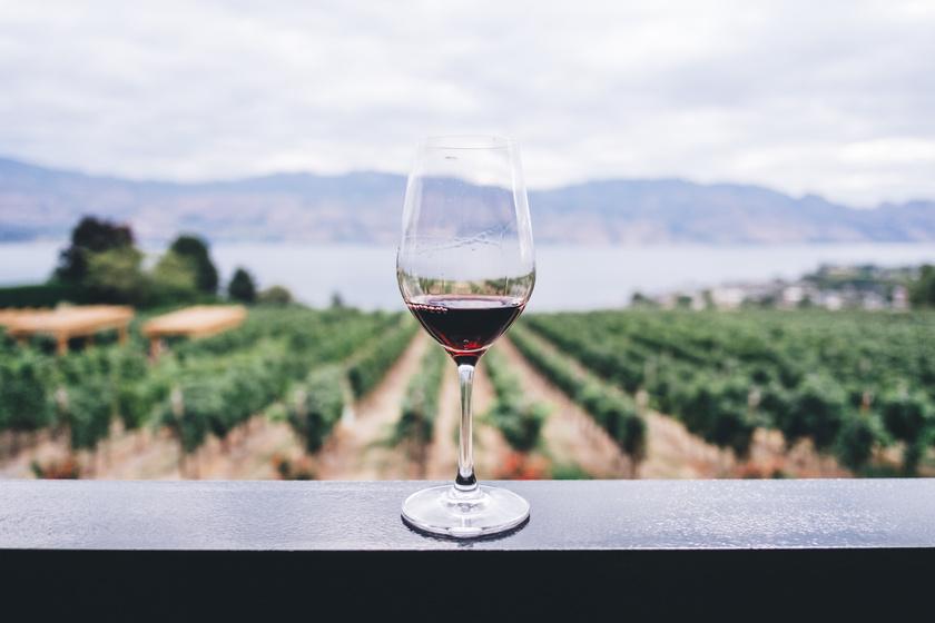 Elkezdődött a testesebb borok szezonja: mutatunk ötöt, amit érdemes megkóstolni