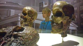 Hogy menthetnek meg milliókat a váci múmiák?