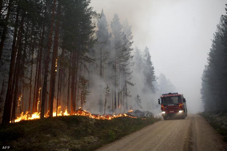 Erdőtűz pusztít a sévdországi Karbole város közelében 2018. július 15-én. Svédországot idén nyáron negyvennél is több erdőtűz sújtotta több mint 20 ezer hektáron, a tűzesetek 600 millió svéd korona becsült kárt okoztak.