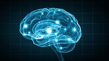 Összekötötték három ember agyát, meg tudták osztani telepatikusan a gondolataikat