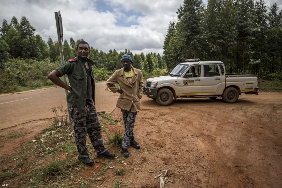 Eddie Mahlala (balra) és Sunday Bush egy privát őrző-védő cég alkalmazottaiként védik a környező farmokat a dél-afrikaia Tzaneen-ben