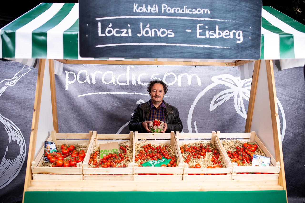 Kevésbé ismert tény, hogy a koktélparadicsom igazi neve cseresznye-paradicsom. Az pedig még kevésbé, hogy itthon a Meki terjesztette el a cseresznye-paradicsom salátában történő felhasználását. Ebben jelentős szerepe volt Dr. Lóczi Jánosnak, aki a paradicsomok és cseresznye-paradicsomok szakértője, és áprilistól novemberig, közel 2 hektáron nevel paradicsomot.