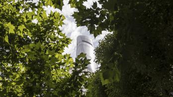 Furcsán reagálnak a növények a klímaváltozásra