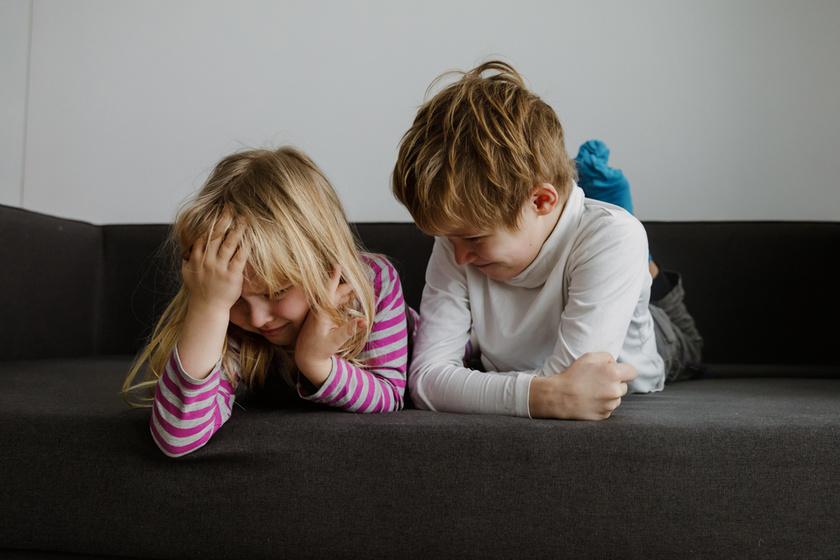 Pszichotikus zavarokat okoz felnőttkorban a rossz testvéri viszony - A kutatás meglepő eredményre jutott