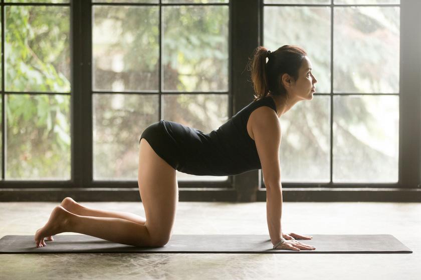Helyezkedj el térdelőtámaszban, lábak csípőszélességben, karok vállszélességben legyenek. Belégzésre a farokcsonttól indítsd a gyakorlatot: csigolyáról csigolyára haladva, lassan homorítsd a hátad, fejtetővel nyújtózz felfelé.