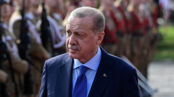 Szabadon engedték az aktivistát, aki 2013-ban megsértette a török elnököt