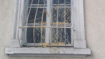 Betörték és bekenték szarral Jávor Benedek ablakát