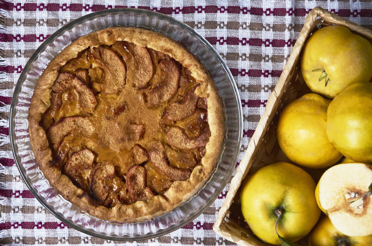 Puha, omlós, birsalmás pite: ebben a sütiben nem fogsz csalódni