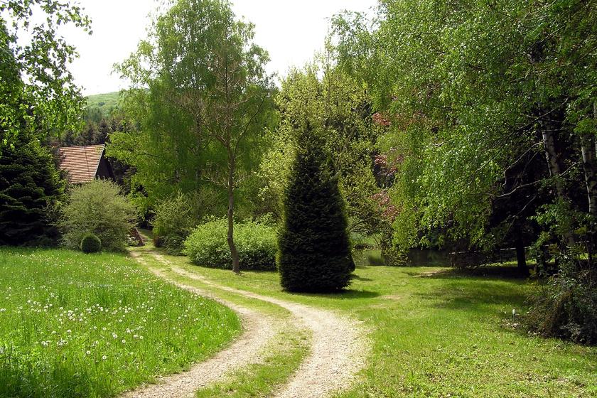 Arborétum, Agostyán