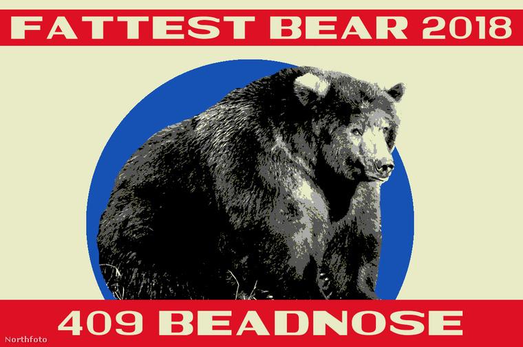 409 Beadnose pedig maximálisan teljesítette a feladatát.Innen is gratulálunk a győzelméhez és kellemes téli álmot kívánunk neki!