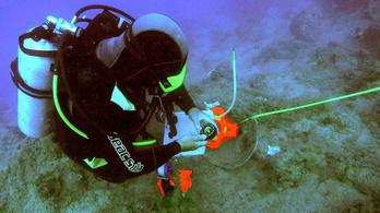 Kalózok támadhattak a halszósz-rakományokra - hatalmas görög hullámsír