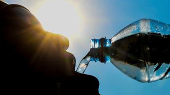 Napi húsz liter vizet isznak, mégis állandóan szomjasak