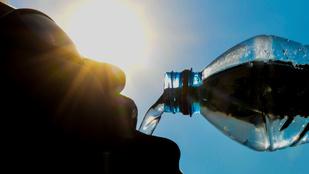 Napi 20 liter vizet isznak, mégis állandóan szomjasak