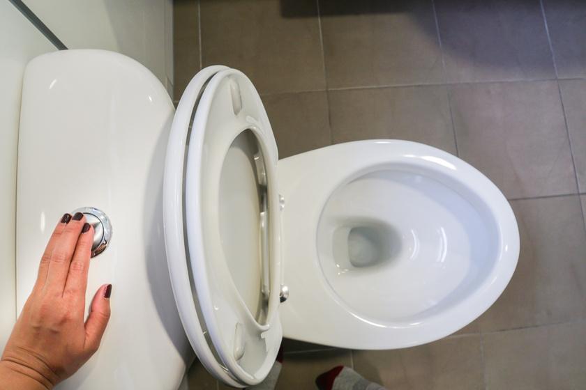 wc-lehuzas