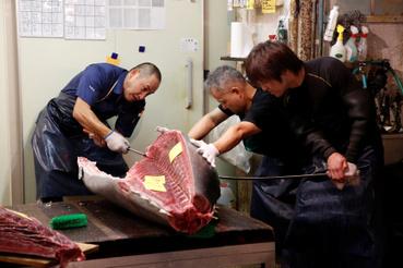 Felvágják a friss tonhalat a halpiacon