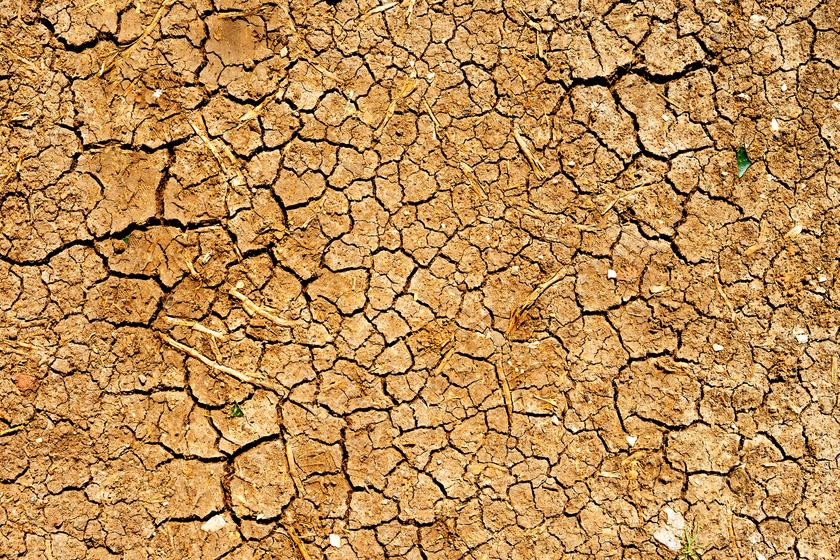 Aggasztó posztot tett közzé a meteorológiai szolgálat: kritikus a szárazság az országban