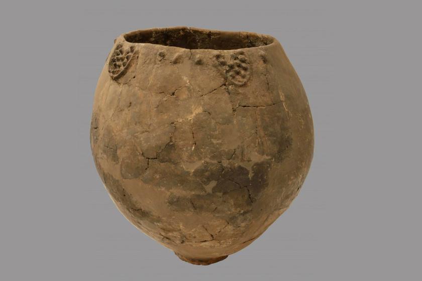 Időszámításunk előtt 6000: jó évjárat lehetett a világ legrégibb bora?