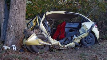 Fának csapódott egy autó, a sofőr meghalt