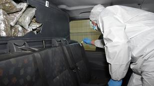Rekord mennyiségű marihuánát találtak egy szerb furgonban