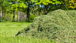 Mihez kezdj a zöldhulladékkal, ha nem viszik el a kukások?