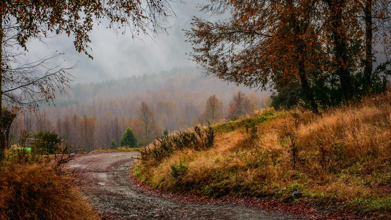 Akár 0 °C is lehet a hosszú hétvégén: erős lehűléssel érkezik meg az ősz
