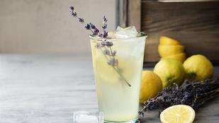 Limonádé fékezte meg a pestisjárványt Párizsban