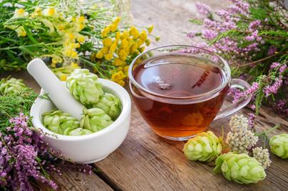 komlotoboz-tea