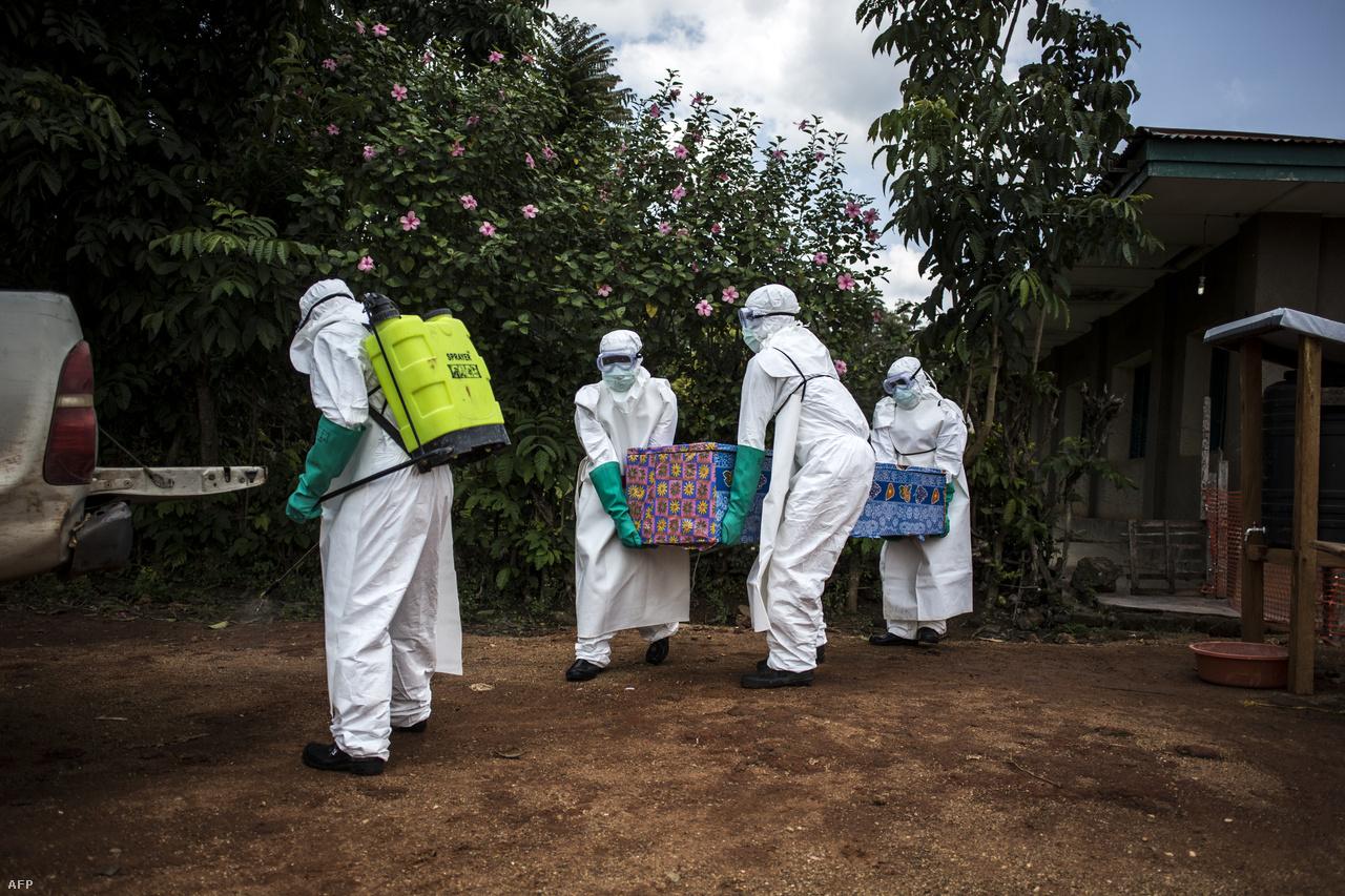 Egészségügyi dolgozók szállítják el egy ebolagyanús beteg holttestét.Ez a 10. járvány, mióta 1976-ban felfedezték az ebolát a Kongói Demokratikus Köztársaság területén. Idén már volt év elején egy másik járvány is, abban 33-an haltak meg, de három hónap alatt sikerült megfékezni a gyors nemzetközi fellépésnek köszönhetően. Augusztus óta több mint 27 ezer embert oltottak be a hivatalosan még mindig kísérleti, de hatékonynak bizonyuló vakcinával, ezzel sikerült lassítani a betegség terjedését.