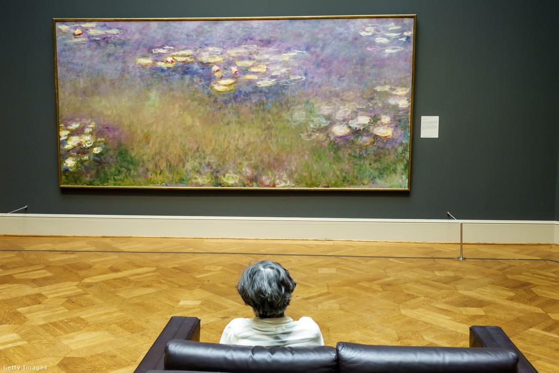 Vízililiom című Monet festményt néz egy látogató, a Saint Louis Art Múzeumban