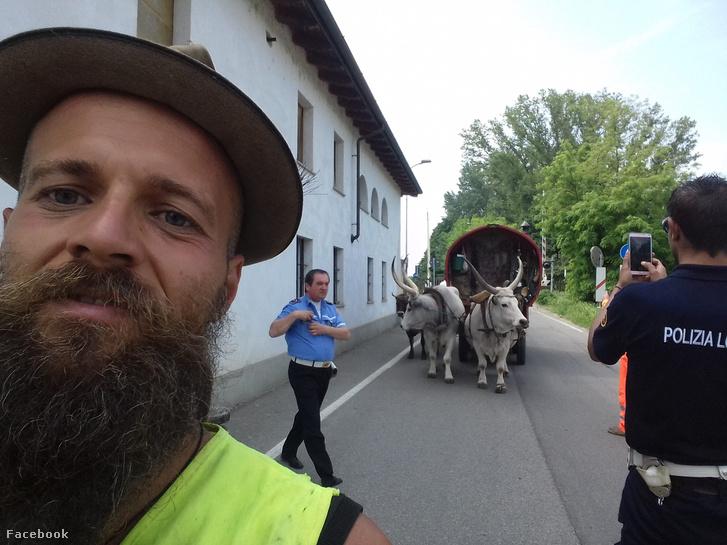 Gecse Balázs Gergő és ökrös szekere 2018. május 27-én