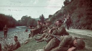 Ki sem robbant a II. világháború, egy magyar könyv már megírta a német vereséget