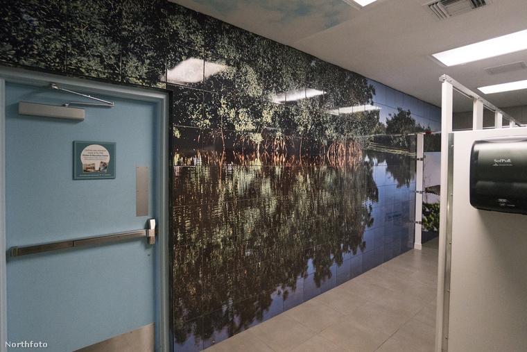 A falakon mindenhol a természetvédelmi körzetről készült fotók láthatók, még a csempén is.
