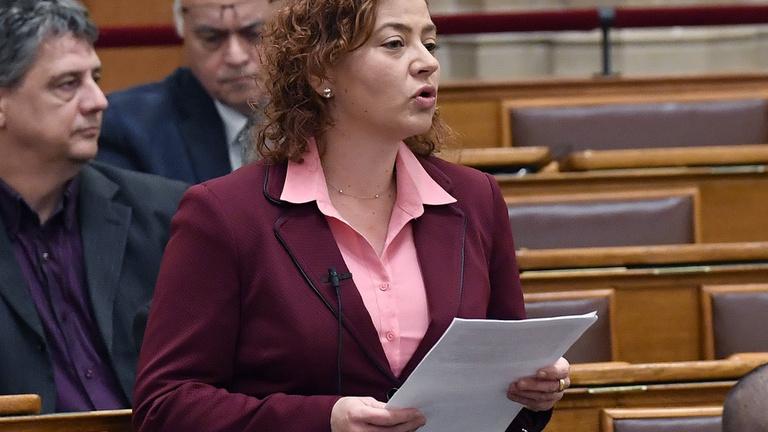 Gyurcsány pártja elkezdett aggódni a határon túliakért