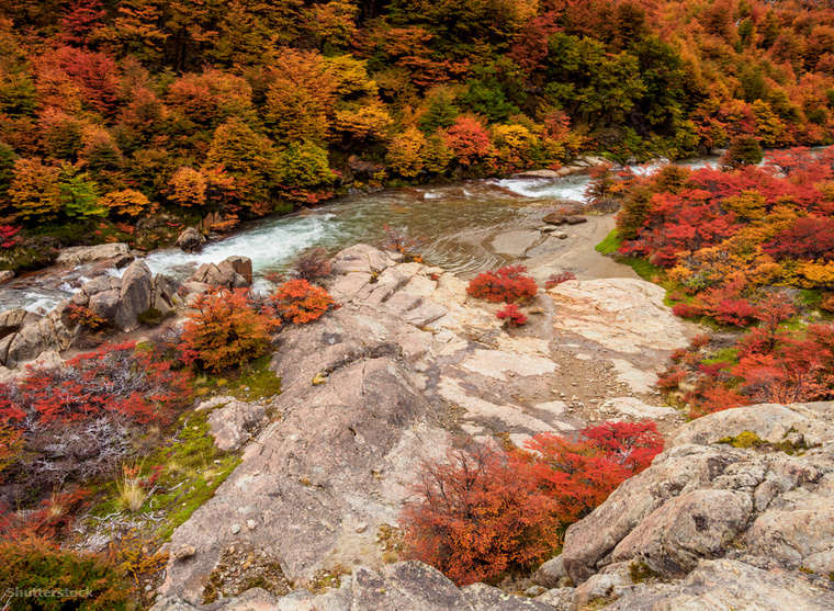 A Chilét és Argentínát átszelő Andok erdejeinek lenga és ñire fái ilyenkor, ősszel sárgába és vörösbe borulnak Neuquentől a Tűföldig