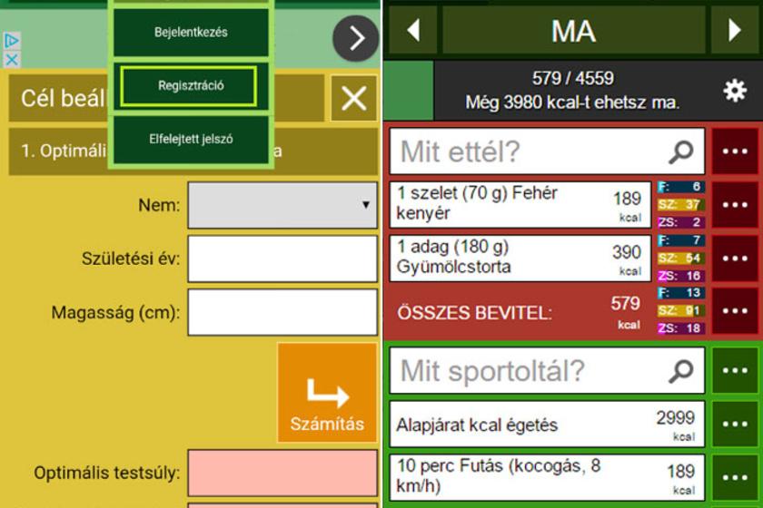 A magyar fejlesztésű Kalóriabázis nevű applikációnál te magad állíthatod be a fogyási tervedet, vagyis, hogy mennyi idő alatt hány kilótól szeretnél megszabadulni. Az alkalmazás ez alapján kiszámolja neked a napi kalória- és tápanyagigényedet.