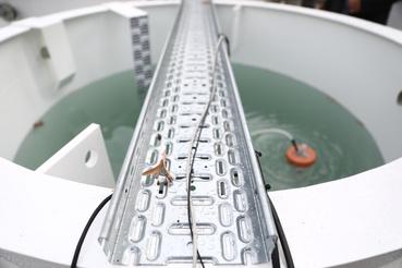 A tartály tetején keresztbe fektetett sín tetszőlegesen szabályozható ledes világítást tart.