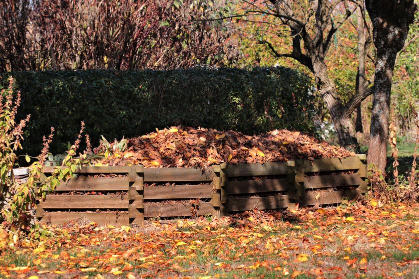 Miért most érdemes komposztálni? Így gondoskodhatsz előre a jövő évi jó termésről