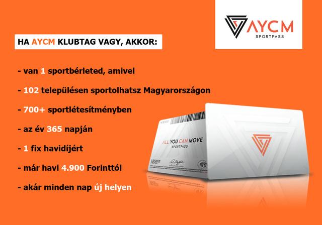 INDEX AYCM01