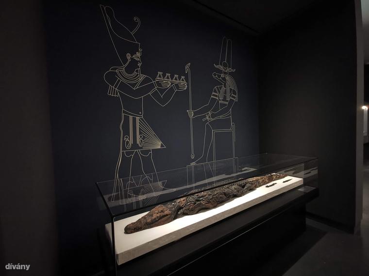 De nem csak krokodil múmiákat lehet nézni, a klasszikus ókori kiállítás, a régi képtár vagy a magyarországi művészetet bemutató tárlatot sem érdemes kihagyni