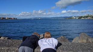 Új-Zélandon gyereket nevelni egy állandó nagy kaland