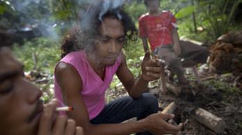 Thaiföld lehet az első ázsiai ország, ahol legalizálják az orvosi marihuánát