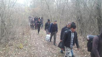 Harminc menekültet találtak a Tisza árterében