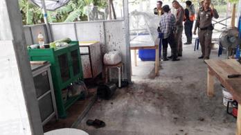 Nem volt igaz, hogy emberi hús került egy thaiföldi vegetáriánus étterem tésztájába