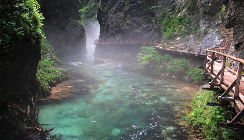 A Vintgar-szurdokban folyó Radovna vize hol smaragdzöldben, hol türkizben játszik - a felszálló párával mesebeli világ tárul elénk.