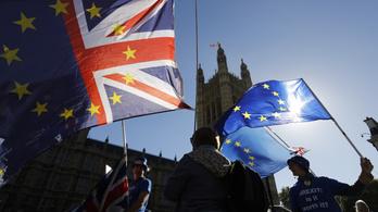 Brit cégvezetők népszavazást követelnek a brexit feltételeiről