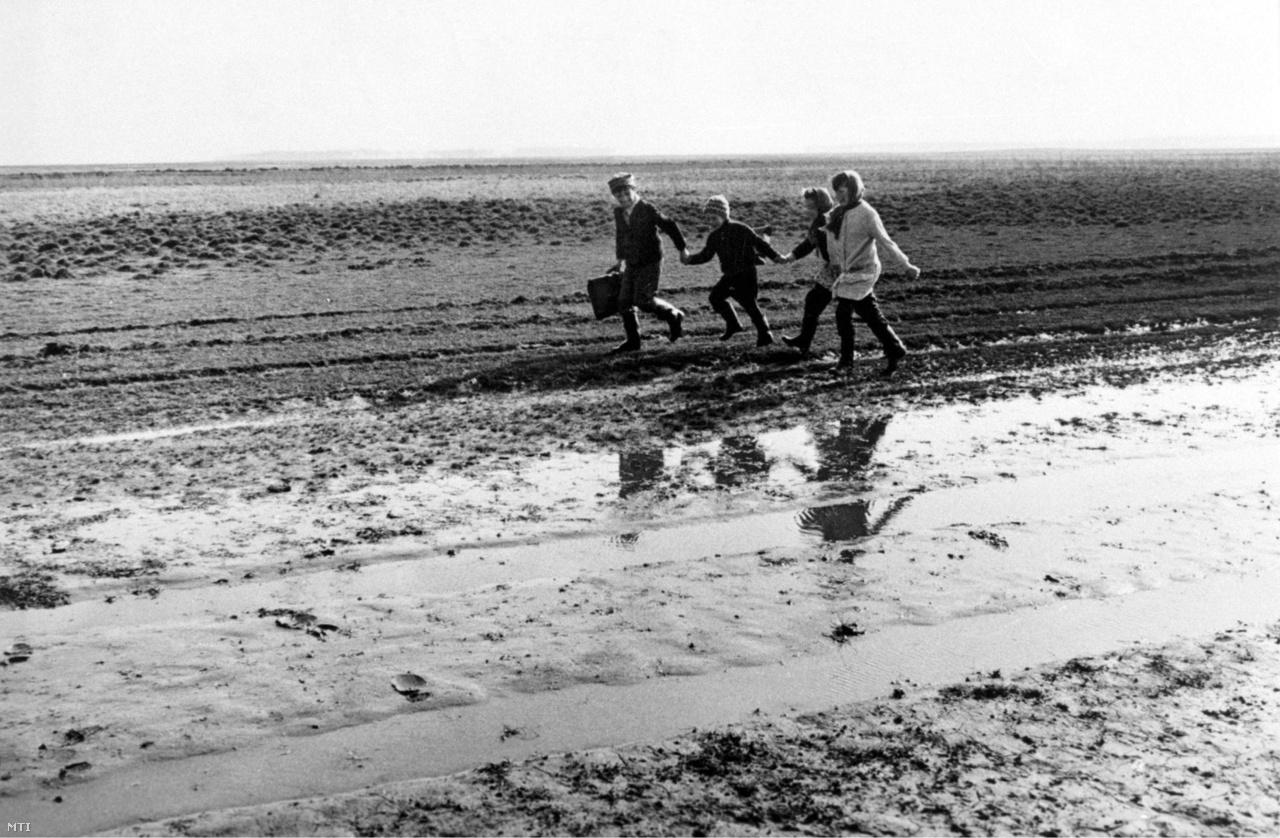 Sáros szántóföldön gyalogló diákok.  A felvétel készítésének pontos helyszíne ismeretlen. (1969)