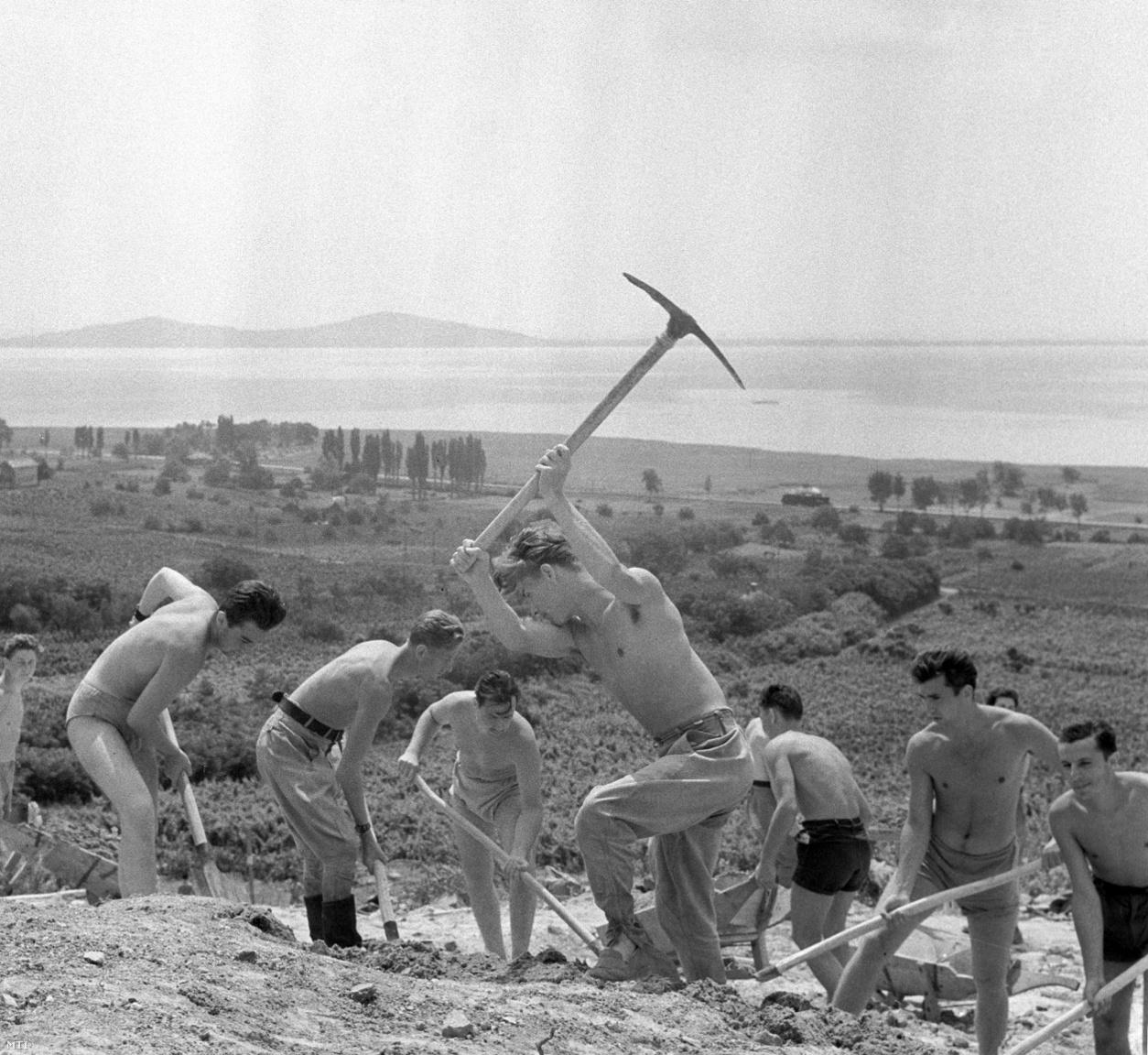 A badacsonyi hegyoldalon dolgoznak a KISZ (Kommunista Ifjúsági Szövetség) Lékai János önkéntes ifjúsági tábor tagjai akik a szőlőtermő vidék rekonstrukcióján dolgoznak. (1959)